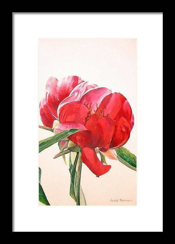 Floral Painting Framed Print featuring the painting Pivoine 2 by Muriel Dolemieux
