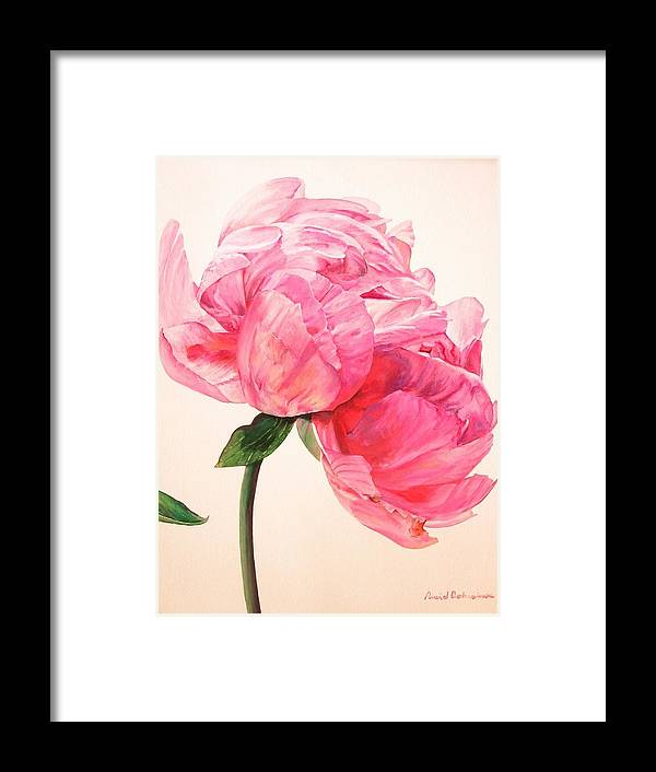 Floral Painting Framed Print featuring the painting Pivoine 3 by Muriel Dolemieux