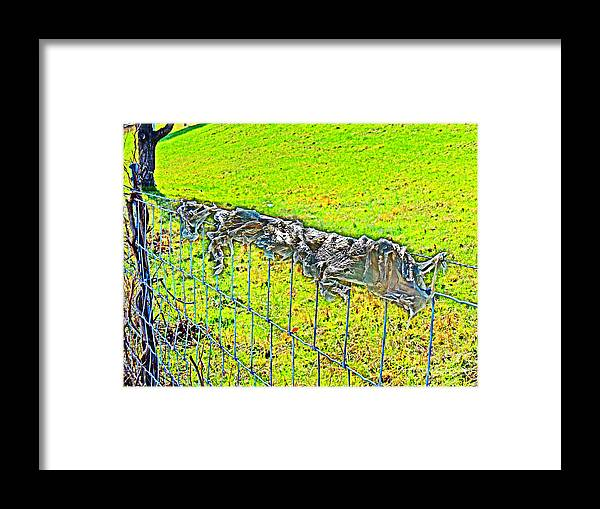 Framed Print featuring the photograph Plastic Sheeting On Fence by David Frederick