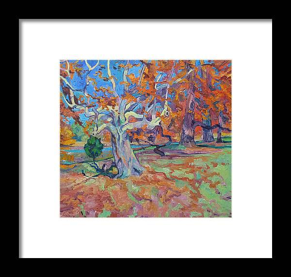 Platan Framed Print featuring the painting Platan Tree In Sunny Autumn by Vitali Komarov