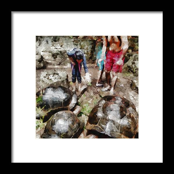 Tortoise Framed Print featuring the photograph Playing With Giant Tortoises by Ashish Agarwal