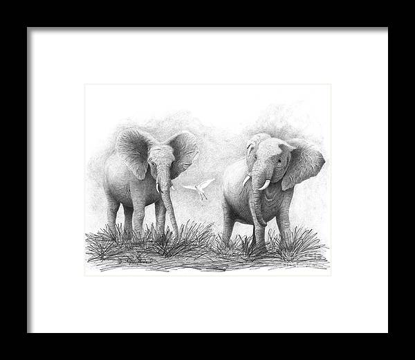 Elephants Framed Print featuring the drawing Playtime by Phyllis Howard