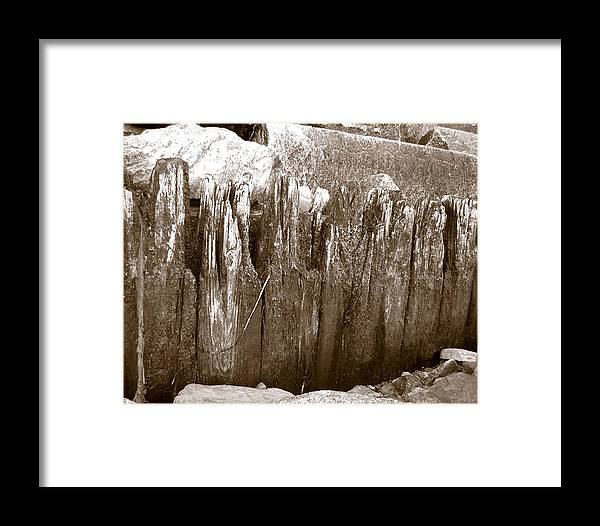 Ocean Framed Print featuring the photograph Plimouth Wood by Heather Weikel