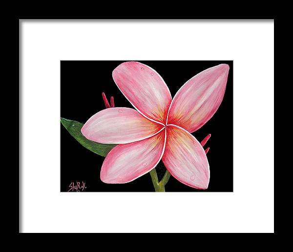 Floral Framed Print featuring the painting Plumeria by SheRok Williams