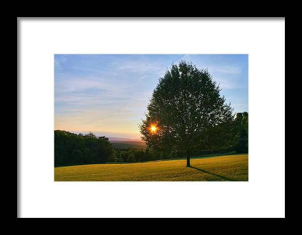Landscape Framed Print featuring the photograph Poetry Of Nature by Mitch Cat