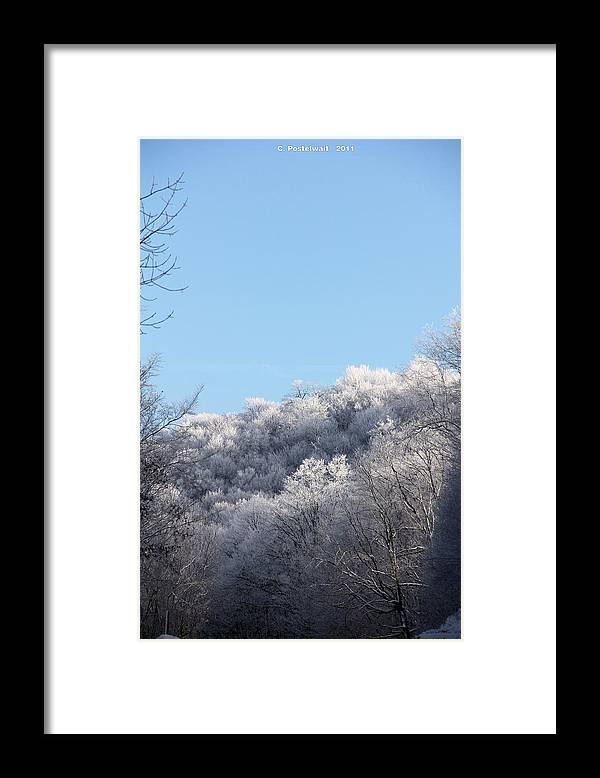 Ice Framed Print featuring the photograph Point Mountain Ice Storm by Carolyn Postelwait