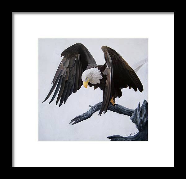 Eagle Framed Print featuring the painting Poised by David Vincenzi