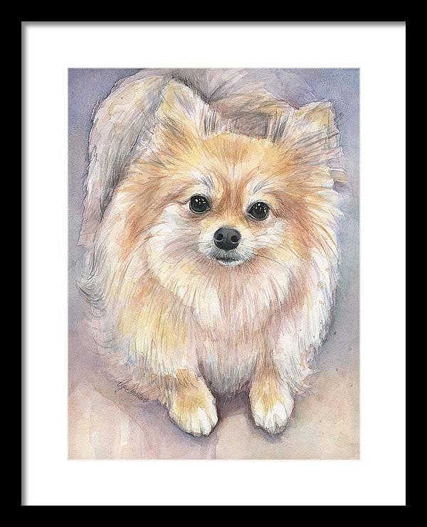 Pomeranian Watercolor by Olga Shvartsur
