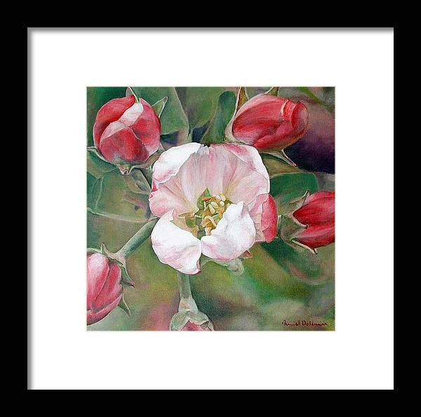 Floral Painting Framed Print featuring the painting Pommier by Muriel Dolemieux