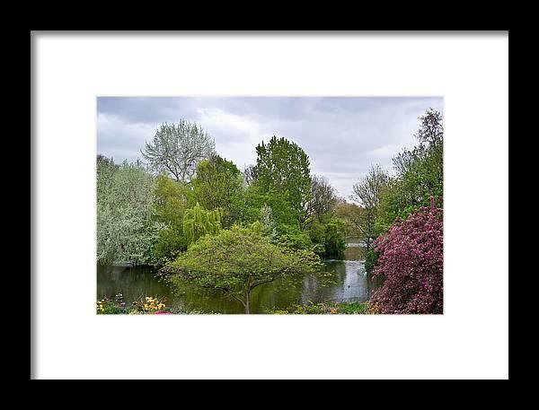 Garden Framed Print featuring the photograph Pond At Buckingham Palace London by Douglas Barnett