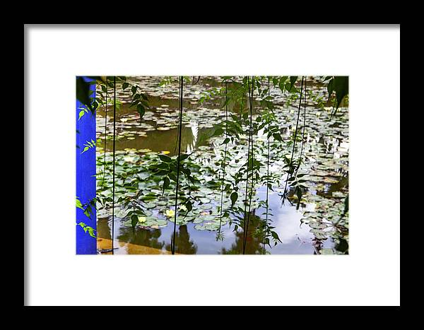 Pond Framed Print featuring the photograph Pond In Marrakesh by Henri-Louis ROLAND