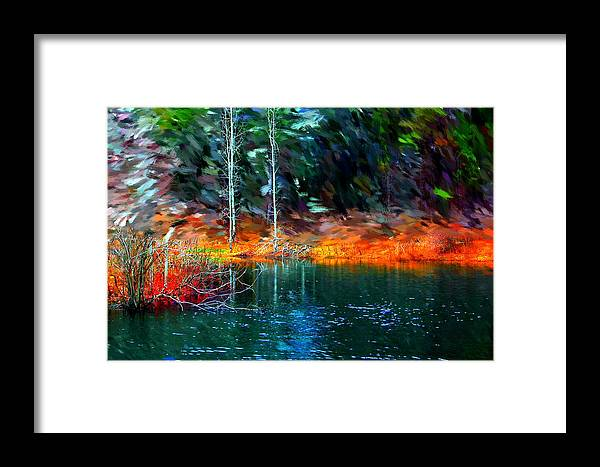 Digital Photograph Framed Print featuring the photograph Pond In The Woods by David Lane