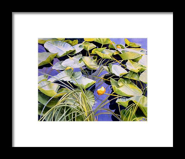 Pond Framed Print featuring the painting Pond Lilies by Sharon Freeman