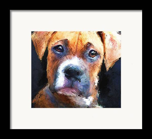 Dog Framed Print featuring the painting Pooch by Robert Smith