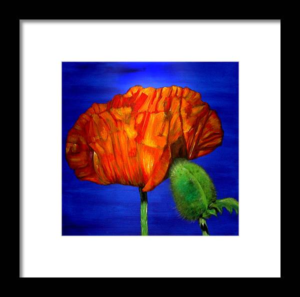 Flower Framed Print featuring the painting Poppy And Bud by Fiona Jack