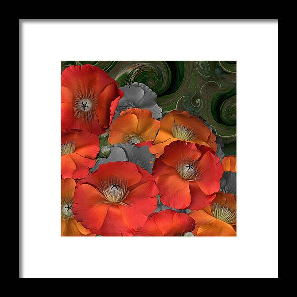 Poppy Framed Print featuring the photograph Poppy by Stan Bowman