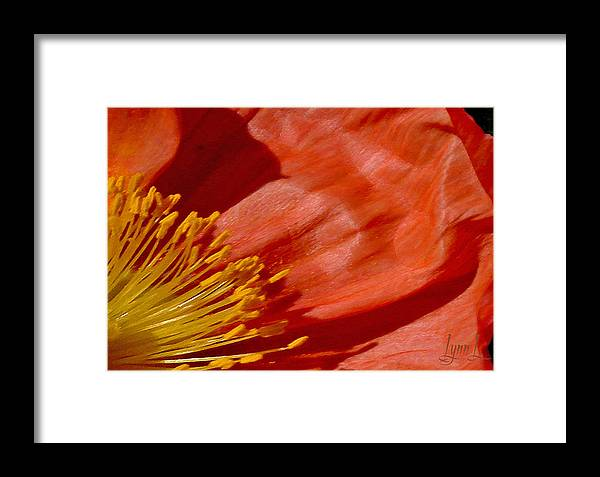 California Framed Print featuring the photograph Poppy Love by S Lynn Lehman
