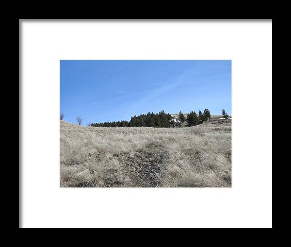 Framed Print featuring the photograph Popular Paradise by Dan Hassett