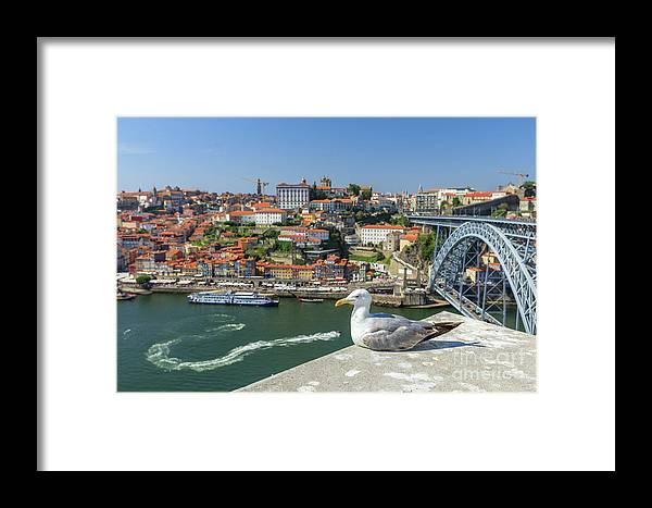 Porto Framed Print featuring the photograph Porto Skyline Seagull by Benny Marty
