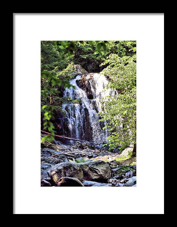Waterfalls Framed Print featuring the photograph Portrait Of Houston Brook Falls by Sandra Huston