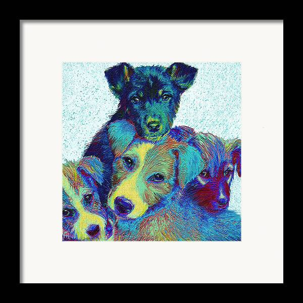 Puppies Framed Print featuring the digital art Pound Puppies by Jane Schnetlage