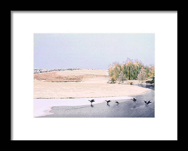 Landscape Framed Print featuring the photograph Powell Gardens in Winter by Steve Karol