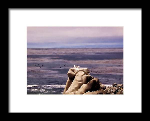 Landscape Framed Print featuring the photograph pr 132 - Nap Time in Monterey by Chris Berry