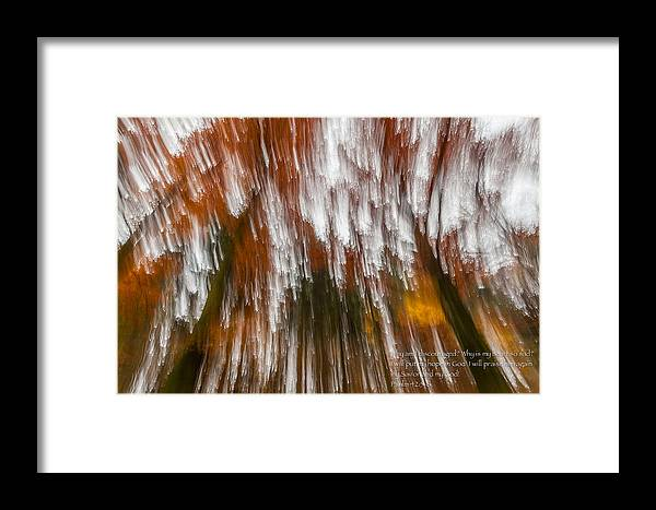 Trees Abstract Autumn Framed Print featuring the photograph Praise You In This Storm by Alex Zabo