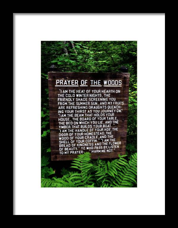 Prayer Framed Print featuring the photograph Prayer Of The Woods by Michelle Calkins