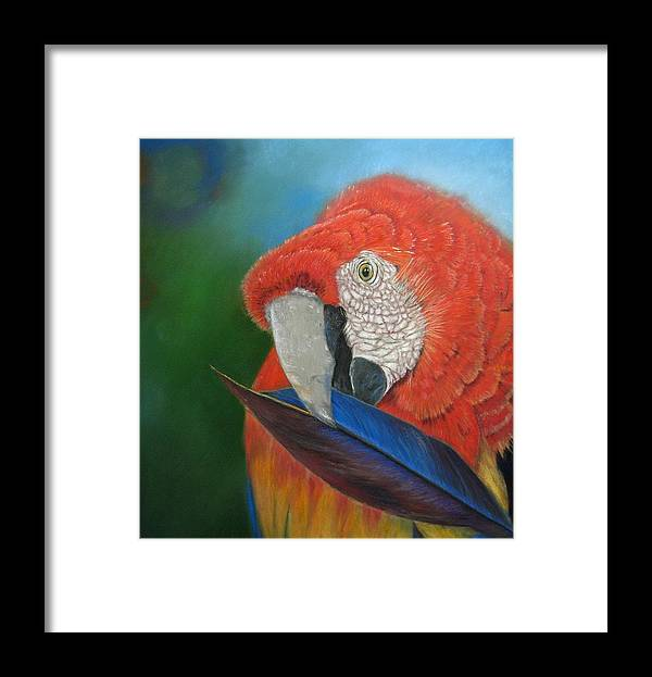 Bird Framed Print featuring the painting Presumida by Ceci Watson