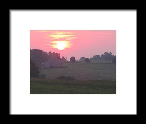 Nature Framed Print featuring the photograph Pretty In Pink by Martie DAndrea