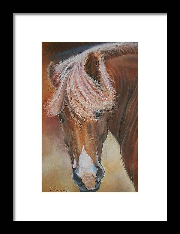 Animal Framed Print featuring the painting Prince Charming by Dragan Gilic