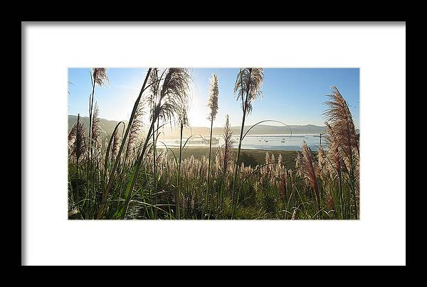 Harbor Framed Print featuring the photograph Princeton Harbor. California by Bob Bennett
