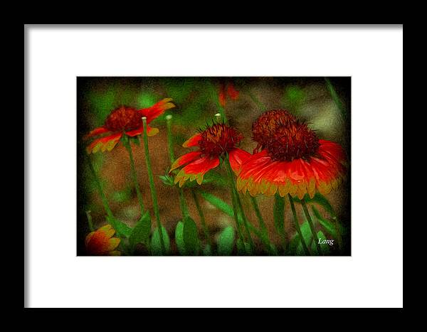 Flowers Framed Print featuring the photograph pring Blooms by John Lang