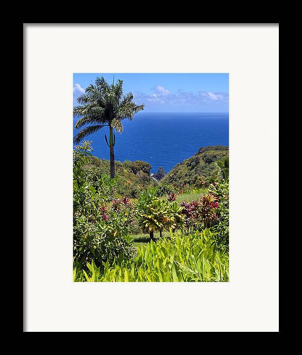 Landscape Framed Print featuring the photograph Pristine by Nicole I Hamilton