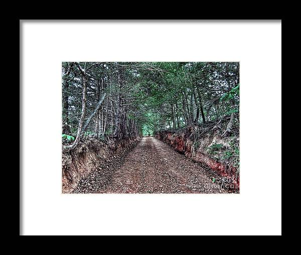 Tree Roots Framed Print featuring the photograph Private Road by John Myers