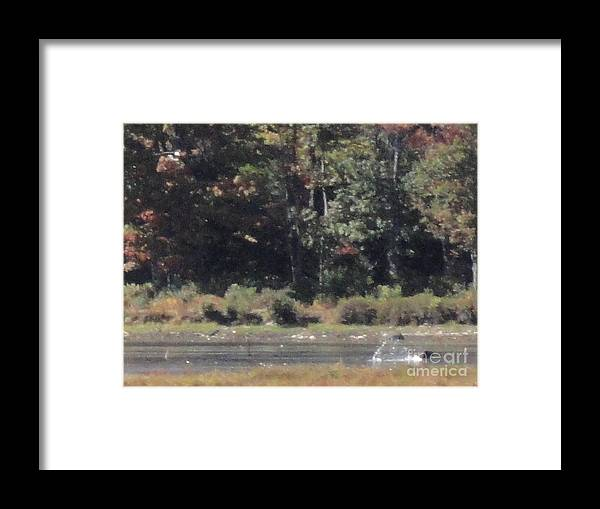Promised Land Xiii Framed Print featuring the photograph Promised Land Xiii by Daniel Henning