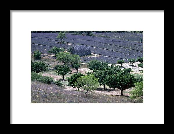 Provence Framed Print featuring the photograph Provence by Flavia Westerwelle