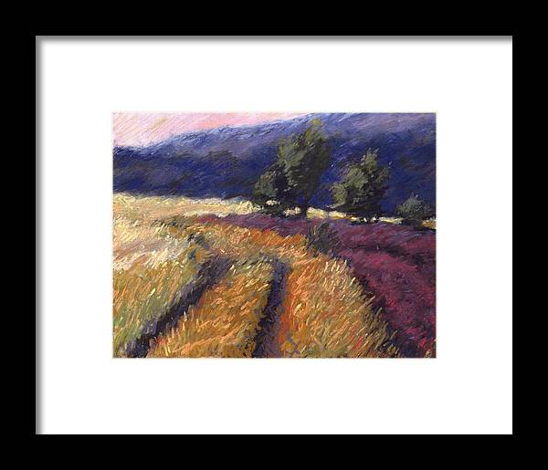 Provence France Field Landscape Framed Print featuring the pastel Provence by Pat Snook