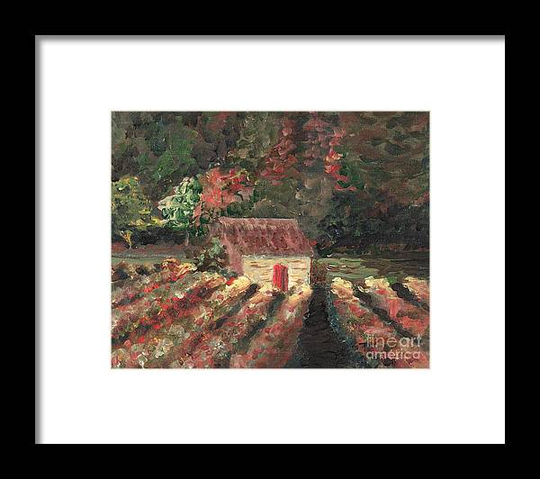 Landscape Framed Print featuring the painting Provence Vineyard by Nadine Rippelmeyer