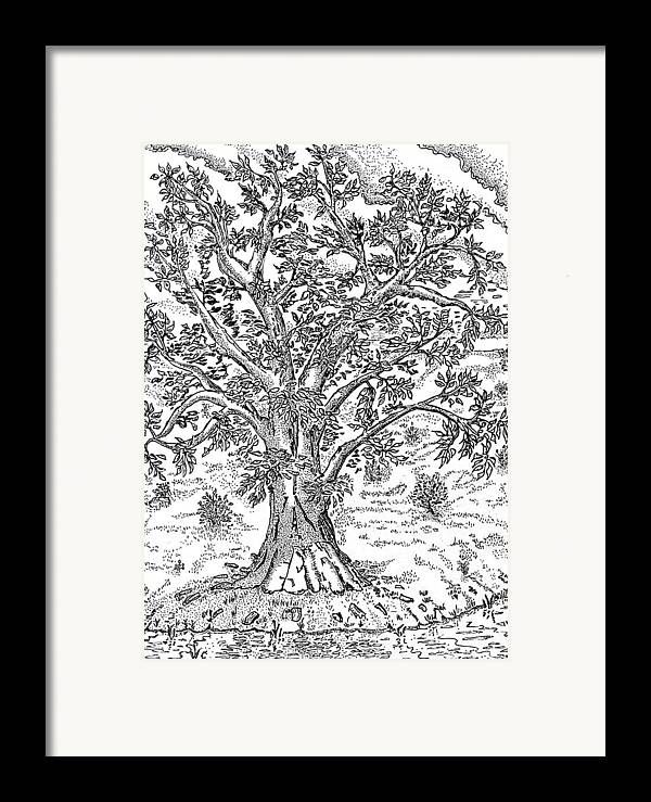 Psalm One Framed Print featuring the drawing Psalm One by Glenn McCarthy Art and Photography