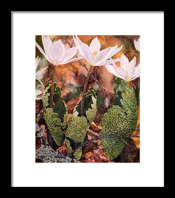 Flowers Framed Print featuring the painting Puccoon by Thomas Akers