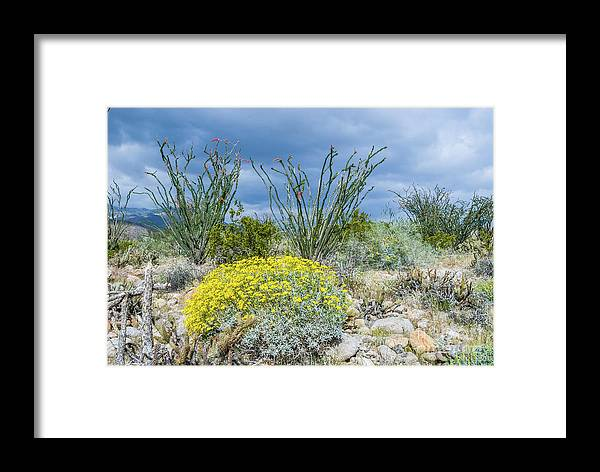 Wildflowers Framed Print featuring the photograph Pucker Up by Jerry Sellers