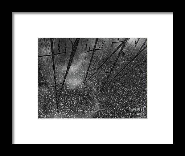 Denmark Framed Print featuring the photograph Puddle Of Dreams by Bruce E Dall