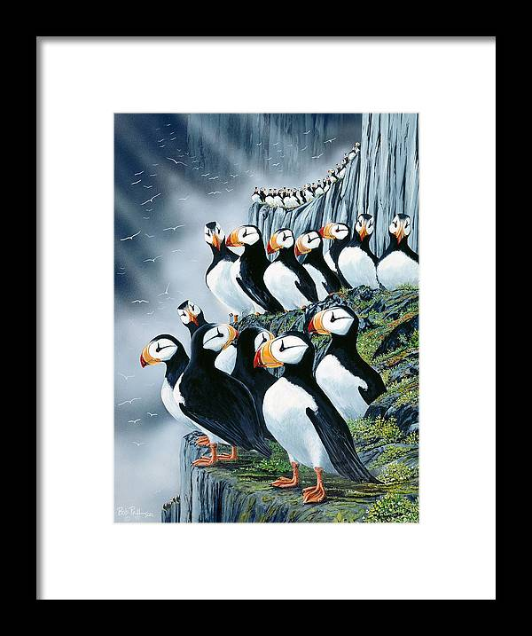 Puffin Birds Framed Print featuring the painting Puffin College by Bob Patterson
