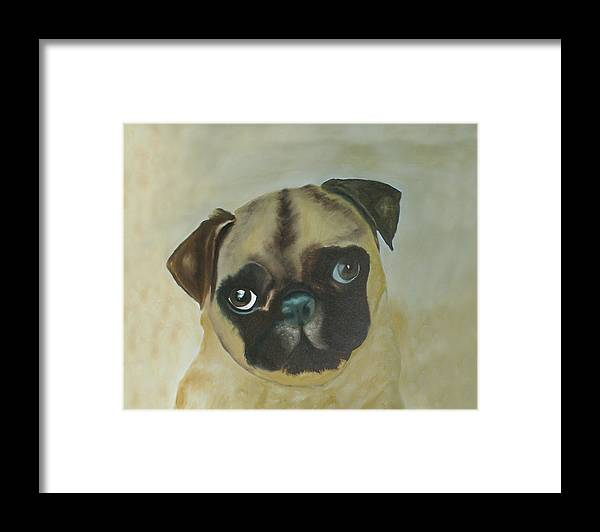 Framed Print featuring the painting Pug by Dick Larsen
