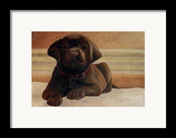 Puppy Framed Print featuring the drawing Puppy Love by Susan Clausen