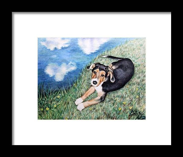 Dog Framed Print featuring the painting Puppy Max by Nicole Zeug
