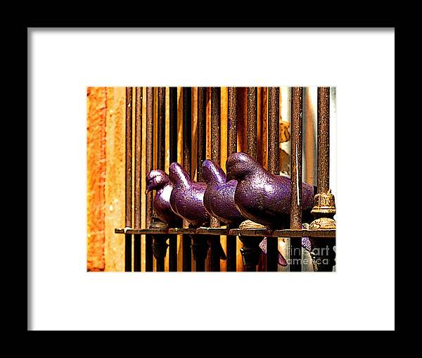 Tlaquepaque Framed Print featuring the photograph Purple Doves 1 by Mexicolors Art Photography