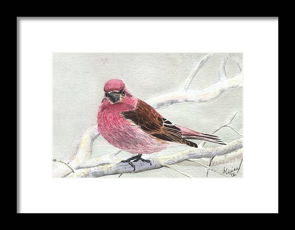Bird Framed Print featuring the painting Purple Finch by Lynn Quinn